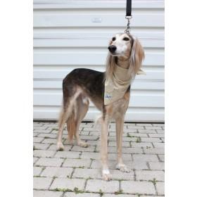 高級寶貝犬驅蟲防護巾 (防護米)